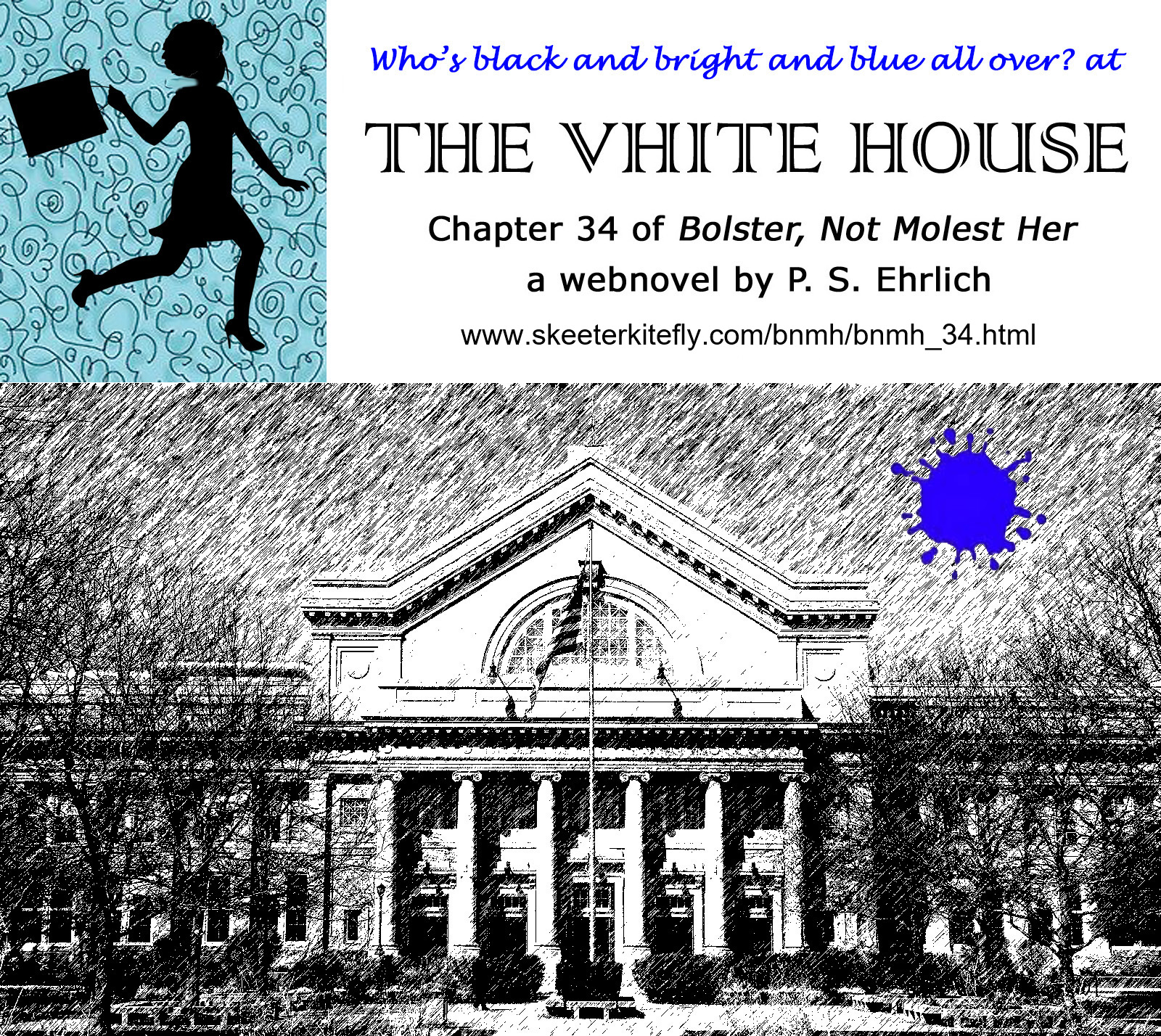 'The Vhite House' logo